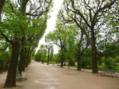 A wet day in the Jardin des Plantes - April 2015