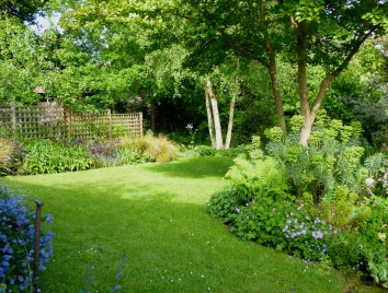 a wild garden - Wild Garden