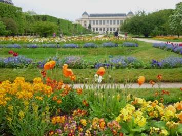 jardin des plantes spring