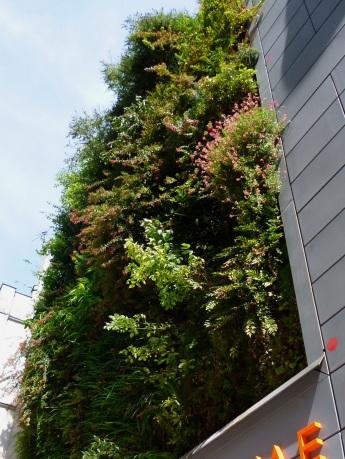 green wall bhv3