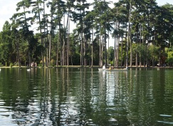 On the lake in the Bois de Boulogne