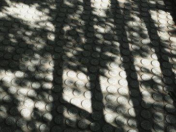 Abstract tree shadows at La Villette - Paris, September 2015