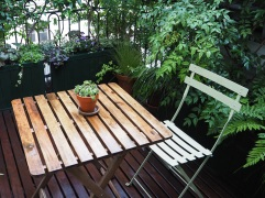 A showery day in our shady balcony garden
