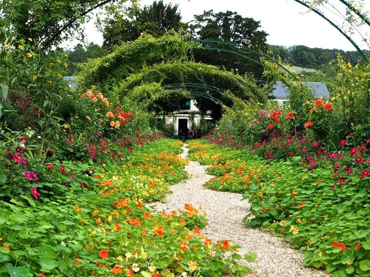 nasturtiums Monet's garden Giverny