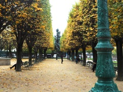 Autumn Colour by Notre Dame