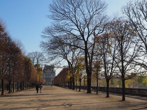 Winter sun in the Tuileries - November 2015