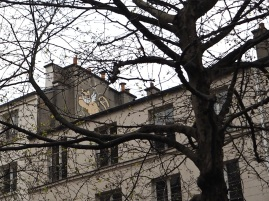 Cat up a tree - January 2016