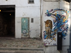 street art leopard door and flowers