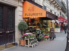 F is for Fleuriste - a florist's shop with plants for house and window box as well as cut flowers