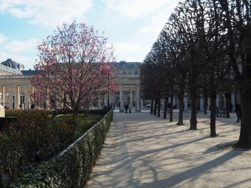 Early spring at the Palais Royal