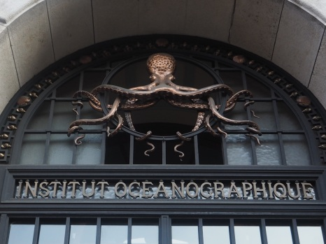 Octopus, Institut Océanographique, Paris 5e.