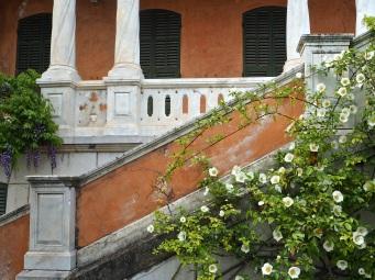 roses villa Hanbury La Mortola