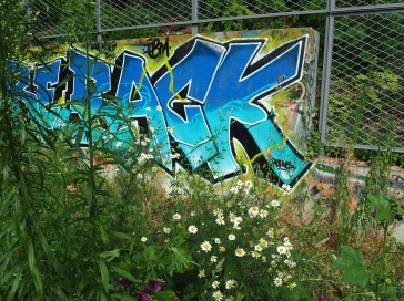 Fencing, marking the end of the accessible section of track, is ignored by wildlife and graffiti artists