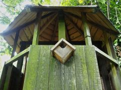 The tree house in our increasingly wild York garden