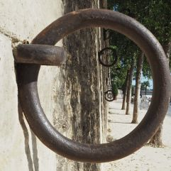Rings at different levels for high and low water - the low ones are useful for bike mooring now.