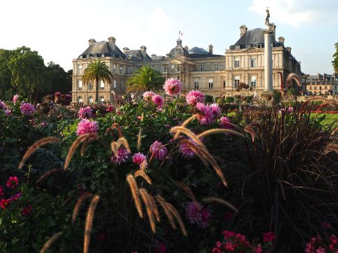 Late summer colour in the Jardin du Luxembourg - September 2016