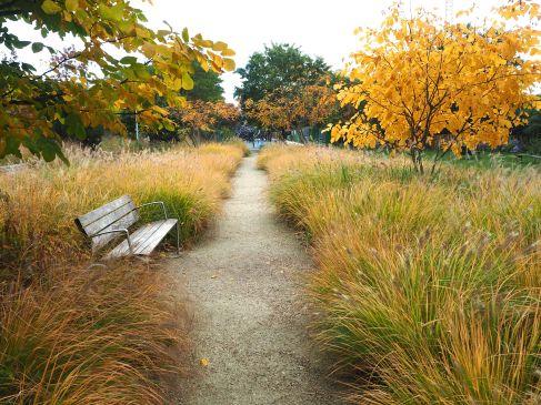 autumn colour parc martin luther king paris 17