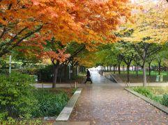 parc Martin Luther King Paris 17