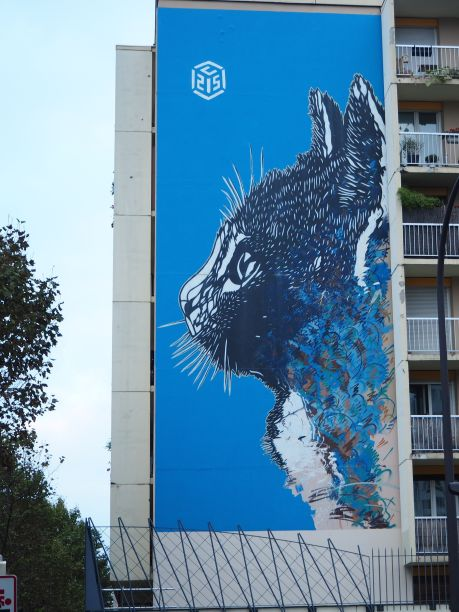 Cat by C215 - October 2016