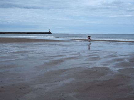 A distant figure gives a sense of space and movement to this image of a Northumberland beach