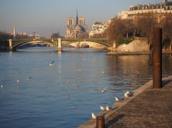 A walk by the Seine, Paris - December 2016