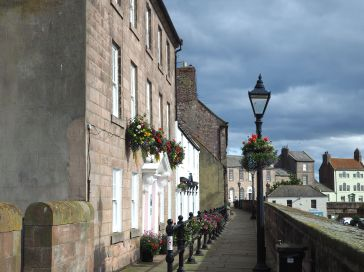 Flowers on the Quay Walls, Berwick, August