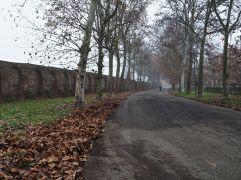A sense of mystery, Piacenza, December