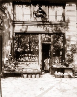 Delahaye & Co, plant and grain merchants, in 1904. Photo by Eugène Atget