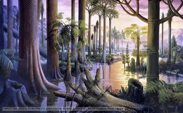 Carboniferous forest. Artwork of a flooded forest containing primitive plant species that existed during the Carboniferous period (360 to 286 million years ago). These included Lepidodendron, an ancient lycopod also known as a scale tree. The Carboniferous forests gave rise to the coal deposits that fuel industry today.