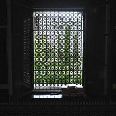 A garden view through the window screen of a meeting hall at the Grand Mosquée de Paris - June 2017