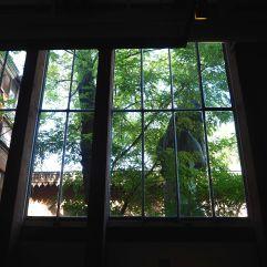 A green view from an artist's atelier - Musée Bourdelle - September 2017