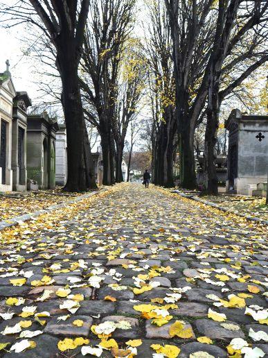 Autumn leaves at Père Lachaise