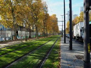 tram tracks autumn porte d'ivry