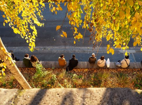 A perch in the sun by the Seine - Parc Berges de la Seine - November 2017
