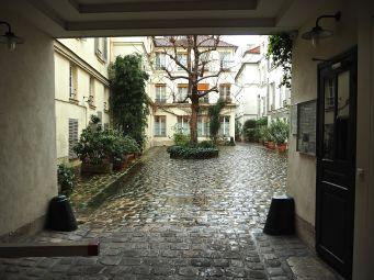 A single mature tree, carefully pruned - Paris 4