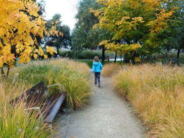 autumn parc martin luther king paris