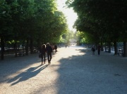 Evening stroll in the Jardin du Luxembourg - May 2017