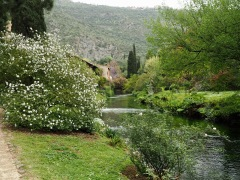 Water is a key element of the garden in the ancient mill stream, narrow rills and reflecting pools