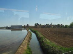 Wet and dry fields separated by an irrigation canal