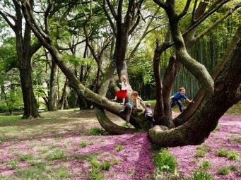 The wild side of the Rome Botanic Garden - April 2018