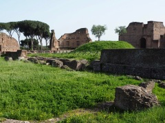 The Palatine was the stronghold of Romulus, the first king of Rome in the 8th century BC.