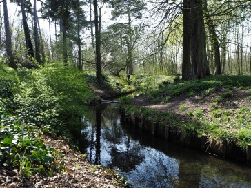 One of the artificial streams in the Bois de Vincennes