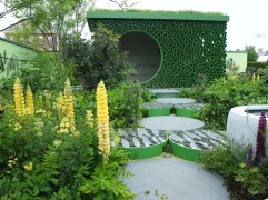 Chelsea Flower Show 2018 plant more peas garden