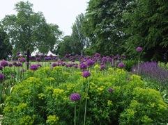 The perennial Broad Walk borders contain many familiar garden varieties planted in bold interlocking blocks...