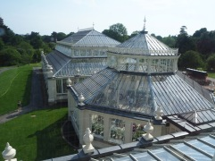 The huge glasshouse is made up of five linked structures