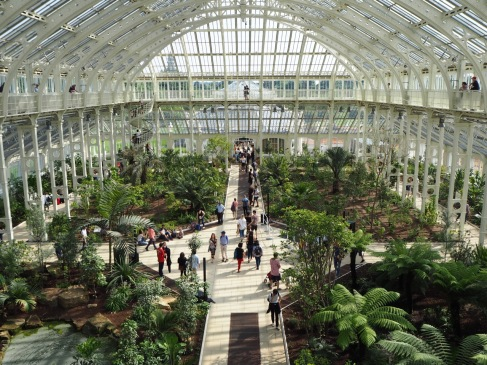 High level walkways offer a treetop view in the newly restored Temperate House