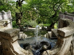 A bubbling fountain in the Rome Botanic Gardens