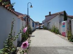 hollyhocks - Angoulins