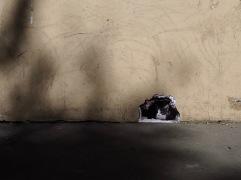 A sunny nook for an imaginary cat - street art in the Marais