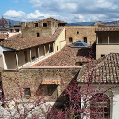Florence roofs in April